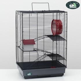 """Клетка для грызунов """"Пижон"""" №5, с 3 этажами, укомплектованная, 41 х 30 х 58 см, серая"""