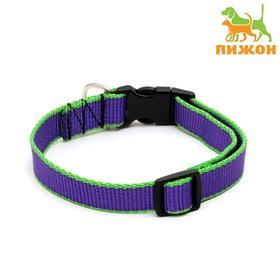 Ошейник капроновый, фастекс с замком, 50 х 2 см, ОШ до 60 см, фиолетовый с зелёным