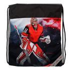 Рюкзак каркасный, Luris «Твинкл», 38 x 30 x 16 см, наполнение: мешок для обуви, «Хоккей» - фото 823242