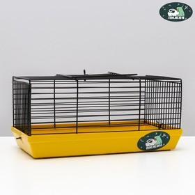 """Клетка-мини для грызунов """"Пижон"""" №1-1, без наполнения, 27 х 15 х 13 см, жёлтая"""