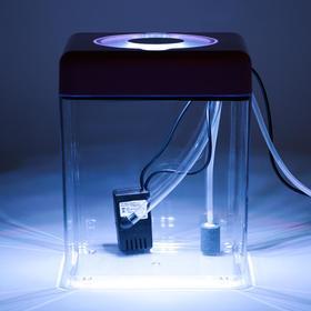 Аквариум куб в комплекте с биологическим фильтром, бесшумным компрессором и светильником LED, 5 л
