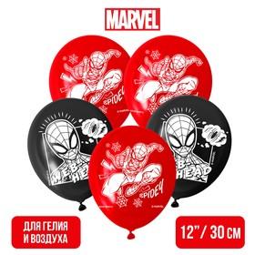 """Воздушные шары """"Spider"""", Человек-паук (набор 5 шт) 12 дюйм"""