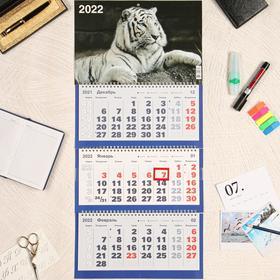 """Календарь квартальный, трио """"Символ года - 13"""" 2022 год, 31 х 69 см"""