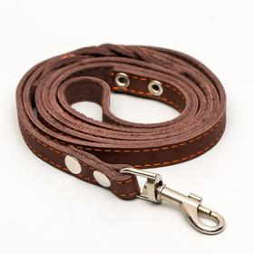 Поводок кожаный однослойный длинный, 2 м х 1,6 см, коричневый