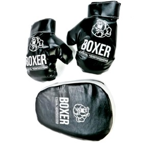 Boxing set number 7 paw and gloves Mix 21536
