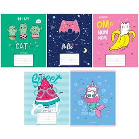 Тетрадь 12 листов в линейку Trendy meow,обложка мелованный картон, блок офсет, МИКС