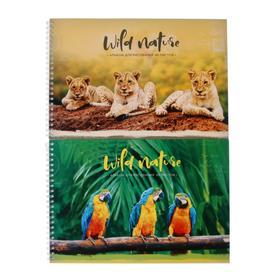 """Альбом для рисования А4, 40 листов на гребне """"Животные"""", обложка мелованный картон, блок 100 г/м2, МИКС"""