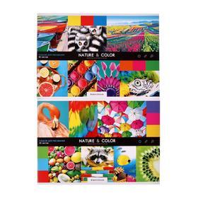 """Альбом для рисования А4, 40 листов на скрепке """"Стиль"""", обложка мелованный картон, блок 100 г/м2, МИКС"""