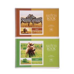 """Альбом для рисования А4, 48 листов на гребне """"Животные"""", обложка мелованный картон, блок 100 г/м2, МИКС"""