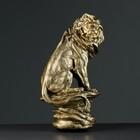 """Фигура """"Лев на камне"""" бронза 17х21х36см"""