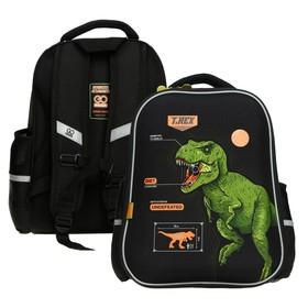Рюкзак каркасный GoPack 165, 38 х 28 х 13 см, эргономичная спинка, Dinosaur