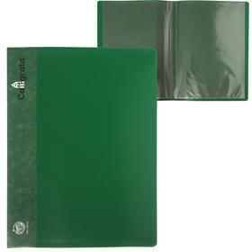 Папка 10 прозр вкладышей A4 500мкм Calligrata, карман на корешок, зеленый