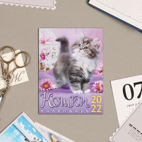 """Календарь на магните, отрывной """"Кошки"""" 2022 год, 10х13 см 5199360"""