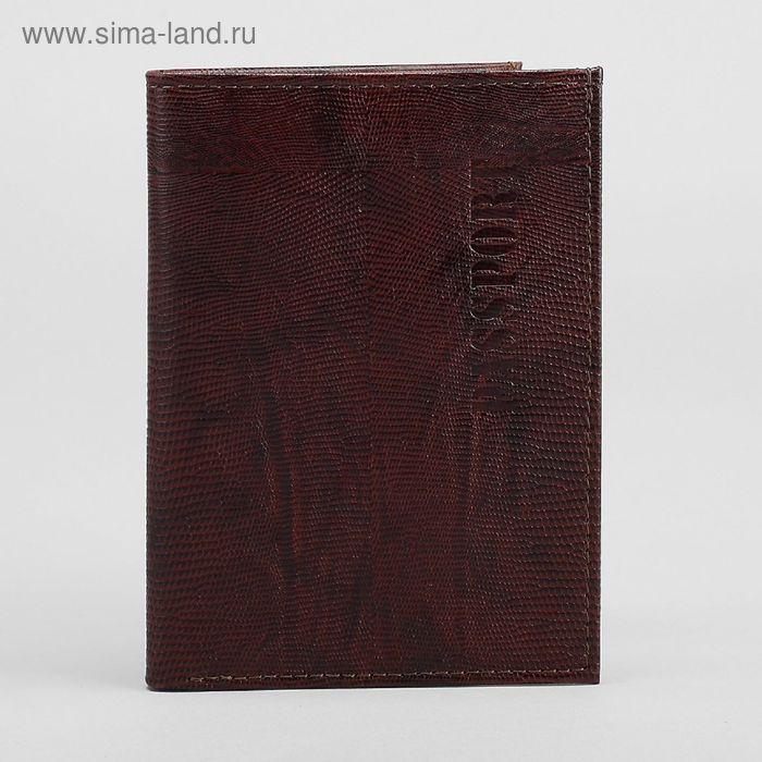 Обложка для паспорта, отдел для купюр, коричневая игуана