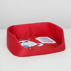 Лежанка для животных с бортом 48 х 36 см «Я ведь лучше собаки»