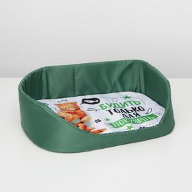 Лежанка для животных с бортом 48х36 см «Будить только для покушать»