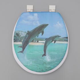 Сиденье для унитаза с крышкой «Дельфины», 40×37 см