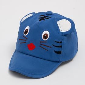 Кепка «Бейсболка» детская, цвет голубой, размер 46-48