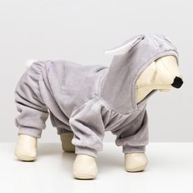 """Комбинезон """"Зайка"""" для собак, XL (ДС 31-33 см, ОШ 34 см, ОГ 46-48 см), серый"""
