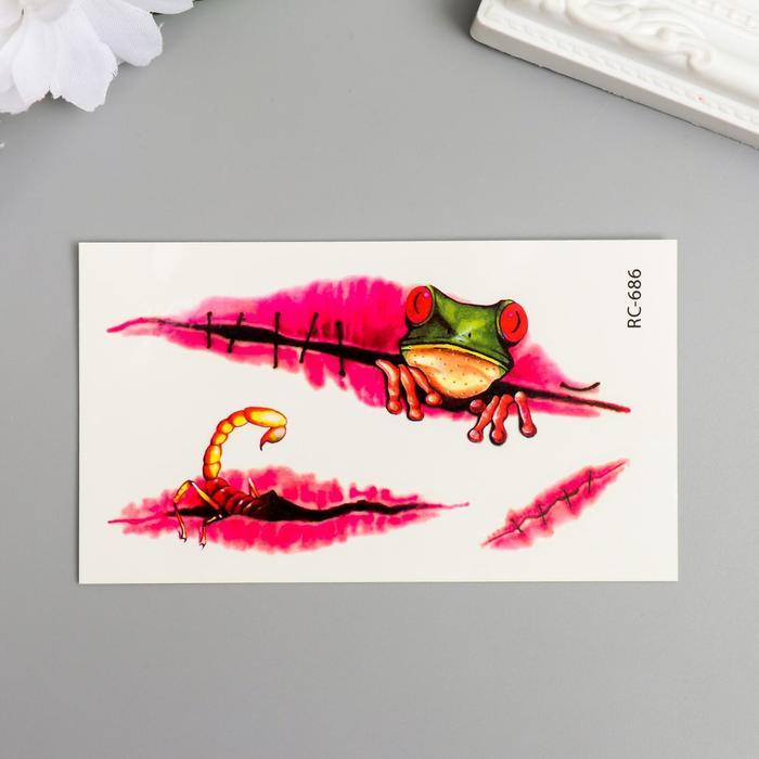 """Татуировка на тело цветная """"Лягуха из раны"""" 10,5х6 см"""