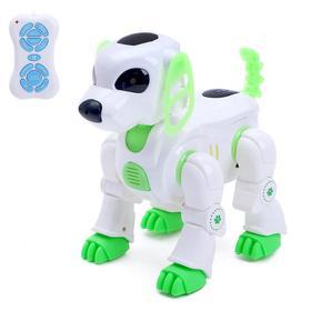 Robot radio-controlled, interactive