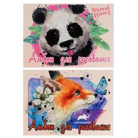 Альбом для рисования А4, 40 листов на клею Animal Planet, обложка мелованный картон, блок 100 г/м2