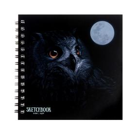 """Скетчбук 192 x 192 мм, 60 листов на гребне """"Ночной филин"""", твёрдая обложка, матовая ламинация, блок 120 г/м2"""