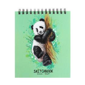 """Скетчбук А6, 40 листов на гребне """"Панда"""", твёрдая обложка, матовая ламинация, блок 120 г/м2"""