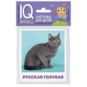 Набор карточек для детей «Породы кошек». Малунова М. В.