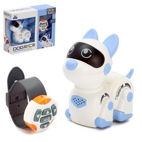 Robot dog radio-controlled
