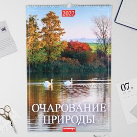 """Календарь перекидной на ригеле """"Очарование природы"""" 2022 год, 320х480 мм"""