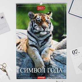 "Календарь перекидной на ригеле ""Символ года 2022 - 2"" 2022 год, 320х480 мм"