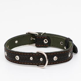 Ошейник комбинированный безразмерный, кожа/брезент, 60 х 3 см, ОШ 30-57 см, чёрный/зелёный