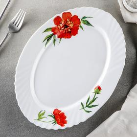 Блюдо овальное Доляна «Бархатная роза», d=30 см