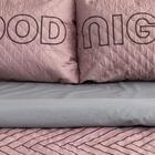 """Комплект """"Этель"""" Goodnight, покрывало 180х220  ±5 см и наволочки 50х70 - 2 шт, микрофибра - фото 861811"""