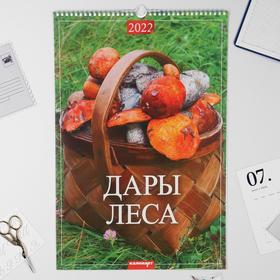 """Календарь перекидной на ригеле """"Дары леса"""" 2022 год, 320х480 мм"""