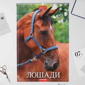 "Календарь перекидной на ригеле ""Лошади"" 2022 год, 320х480 мм"
