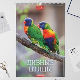 """Календарь перекидной на ригеле """"Дивные птицы"""" 2022 год, 320х480 мм"""