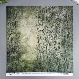 """Бумага для скрапбукинга Mr.Painter """"Вокруг меня Хаки 6"""" 30,5x30,5 см, 190 гр/м2"""