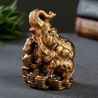 """Статуэтка """"Слон со слоненком на деньгах"""" бронза, 8см - фото 282129676"""