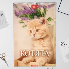 "Календарь перекидной на ригеле ""Котята"" 2022 год, 320х480 мм"