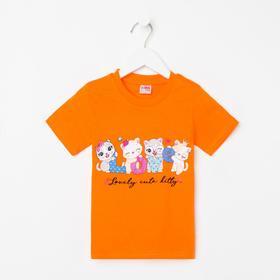 Футболка для девочки, цвет оранжевый/кошечки, рост 104 см