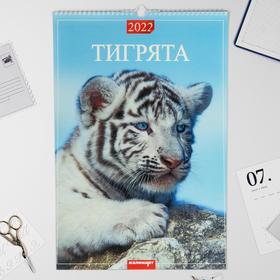 "Календарь перекидной на ригеле ""Тигрята"" 2022 год, 320х480 мм"