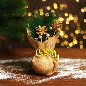 Новогодняя композиция «Золотая шишка и ёлка» МИКС
