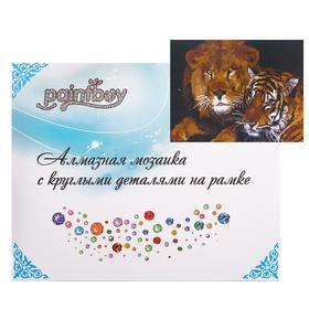 Алмазная мозаика с подрамником, полное заполнение «Тигр и лев» 40×50 см
