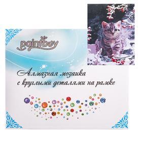 Алмазная мозаика с подрамником, полное заполнение «Котёнок в зимнем саду» 40×50 см