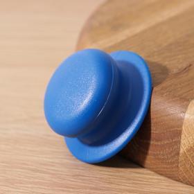 {{photo.Alt || photo.Description || 'Ручка для крышки на посуда с саморезом, d=6 см, цвет синий'}}