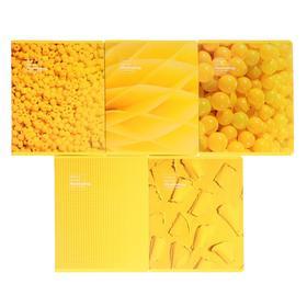 """Тетрадь 48 листов в клетку """"Жёлтое настроение"""", обложка мелованный картон, матовая ламинация, блок офсет, МИКС"""