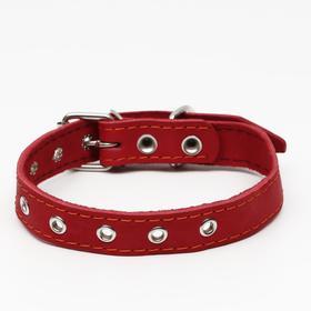 Ошейник кожаный однослойный, безразмерный, 56 х 2.5 см, красный