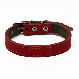 Ошейник комбинированный кожа/брезент, 53 х 2.5 см, ОШ 35-45 см, красный
